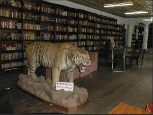 Biblioteca Kaiser. Fptp tomada por un viajero en 2010. Fuente: TripAdvisor